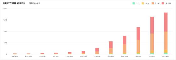 CT SEO Keywords Rankings